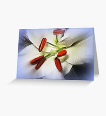 White  Oriental Lily  Greeting Card