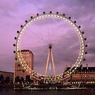 London Eye at Sunset by Kasia Nowak