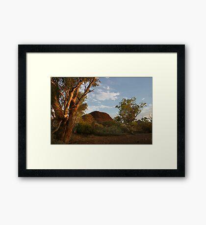 Sunset at the Creek Framed Print