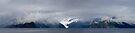 Kenai Peninsula by Walter Quirtmair