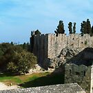 Rhodes Town Medieval Moat  by George Limitsios