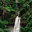Marleshwar Waterfall by Biren Brahmbhatt