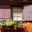 Eguisheim The Beautiful 2 by Jacinthe Brault