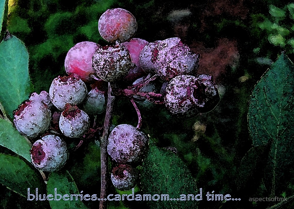 blueberries...cardamom...and time. by aspectsoftmk