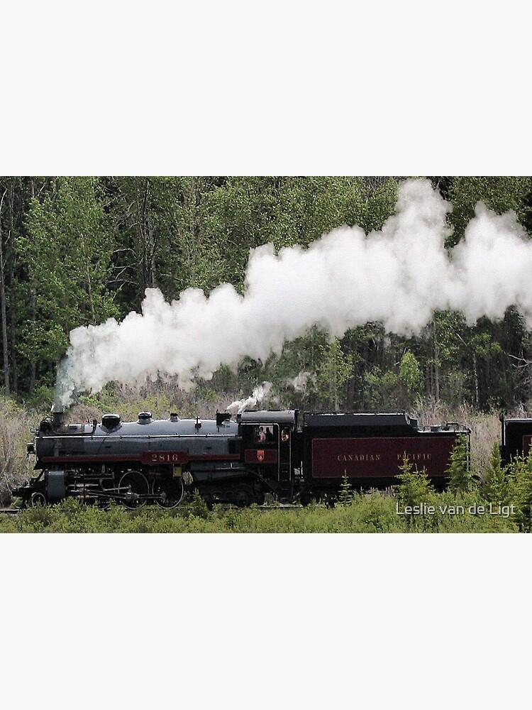 Canadian Pacific Railway Pullover Hoodie Sweatshirt 75