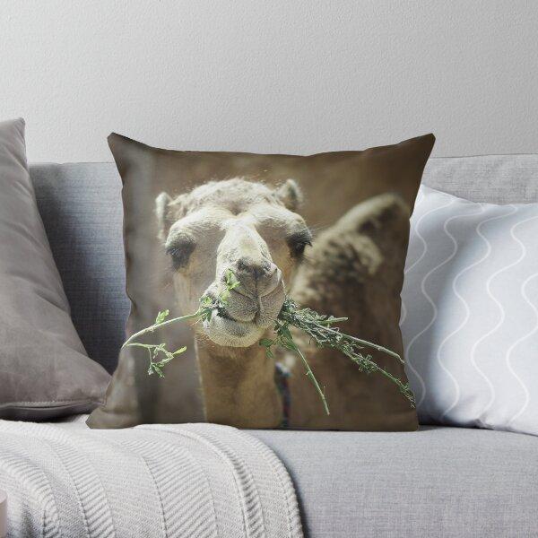 Camel Eating Dinner Throw Pillow