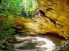 Ash Cave  by Marcia Rubin