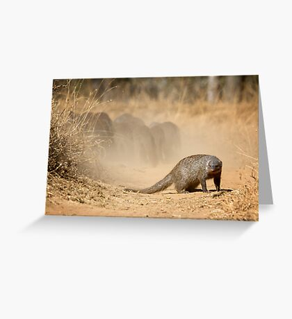 Make Your Escape While I Guard The Rear! Greeting Card