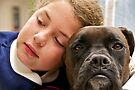 Puppy Love by Helen Vercoe