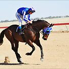 A runner in the 2011 Birdsville Cup by Alwyn Simple