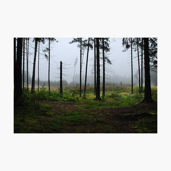 Fog and Fog from my summer house district Photographic Print