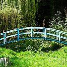 The Blue Bridge, Prescoed, Wales by David Carton
