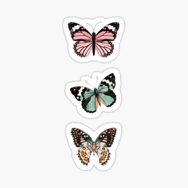 3 butterfly stickers Sticker