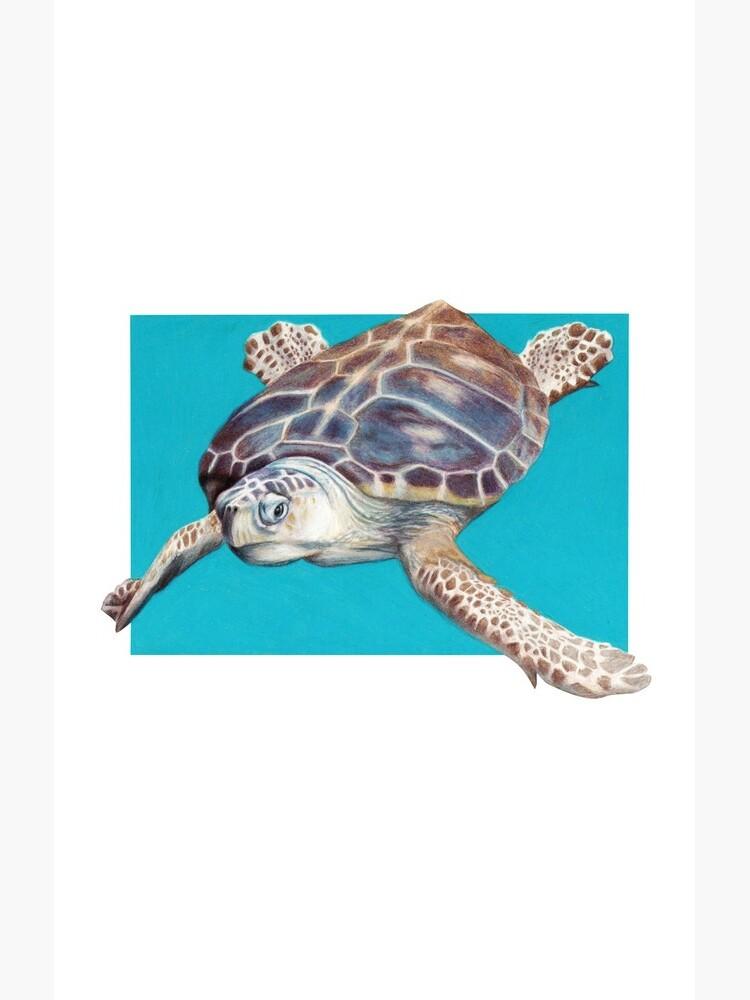 Loggerhead Sea Turtle Art by Artist Sherrie Spencer by serrynawolfe