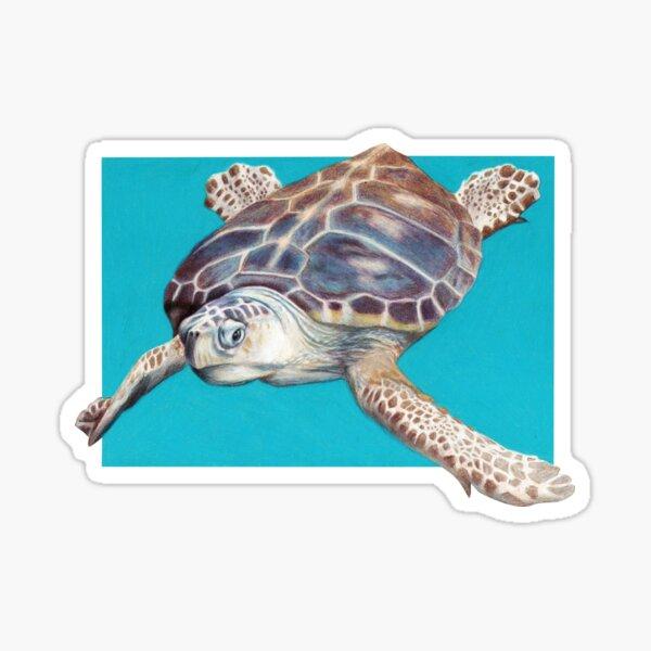 Loggerhead Sea Turtle Art by Artist Sherrie Spencer Sticker