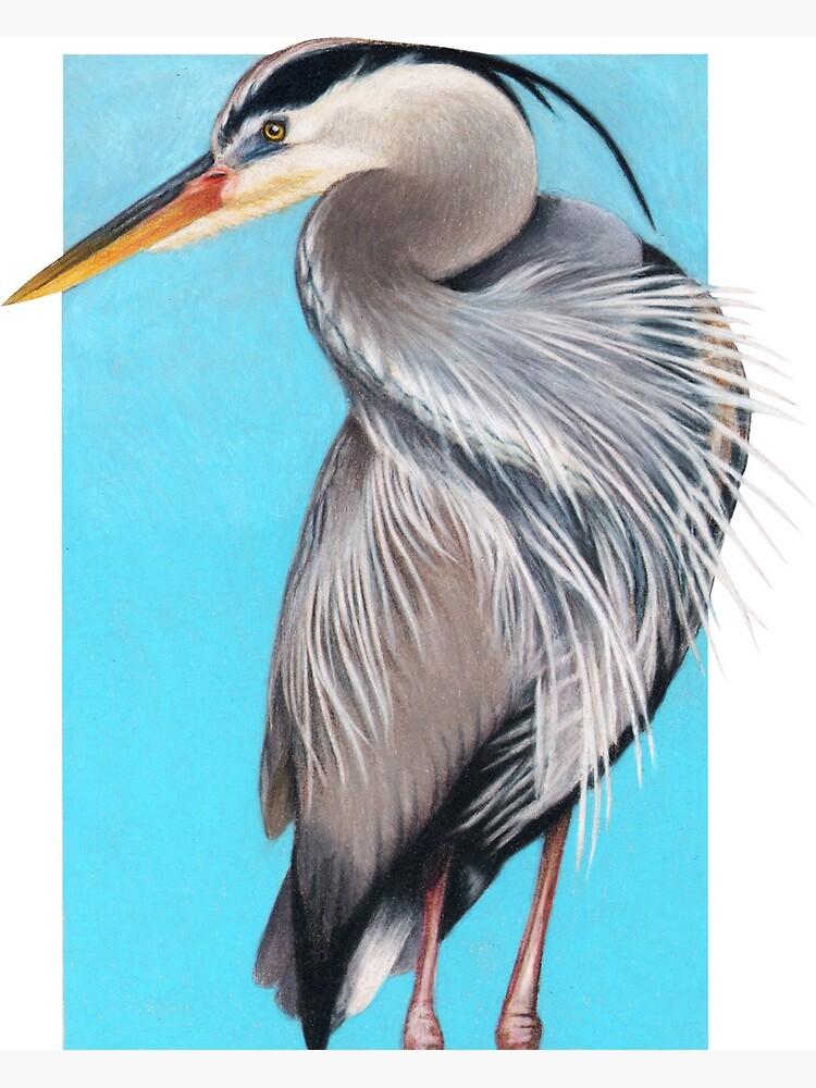 Great Blue Heron art by Wildlife Artist Sherrie Spencer by serrynawolfe