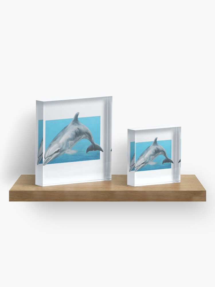Alternate view of Dolphin art by Wildlife Artist Sherrie Spencer Acrylic Block