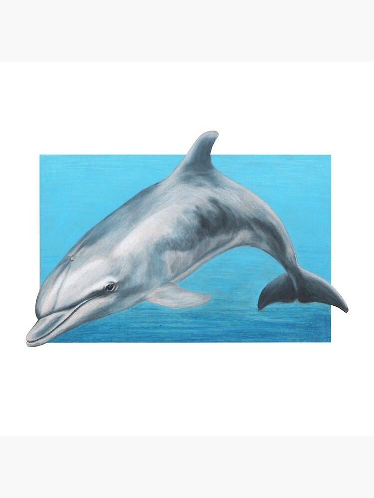 Dolphin art by Wildlife Artist Sherrie Spencer by serrynawolfe