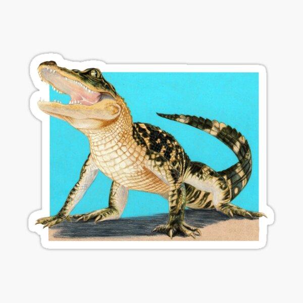Baby Alligator Smiling! art by Wildlife Artist Sherrie Spencer Sticker