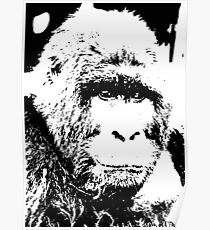 Pop Art Gorilla Poster