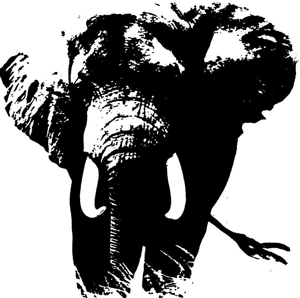 Elephant Pop Art by madeinatlantis