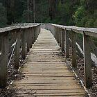 Walk way Neerim South Australia by Callum Brown