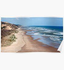 Rapiro Beach - northland, NZ Poster