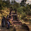 Rust Never Sleeps ..... by Gary  Davey (Jordy)