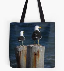 Pacific Gulls (Larus pacificus) - Stony Point, South Australia Tote Bag