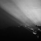 Summer Rays - Black and White by Reuben Vick