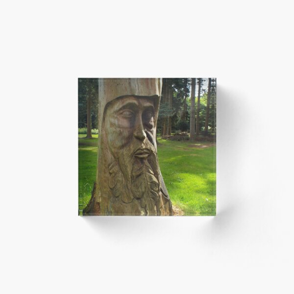 Tree Trunk Man Acrylic Block