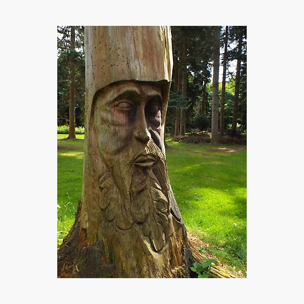 Tree Trunk Man Photographic Print