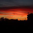 Sunset by Samantha Aplin