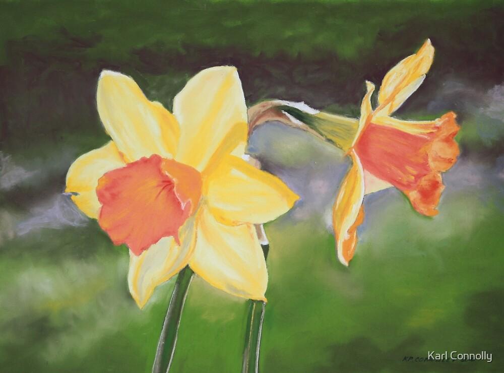 Daffodils by Karl Connolly