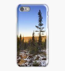 Autum forrest in Lappland iPhone Case/Skin