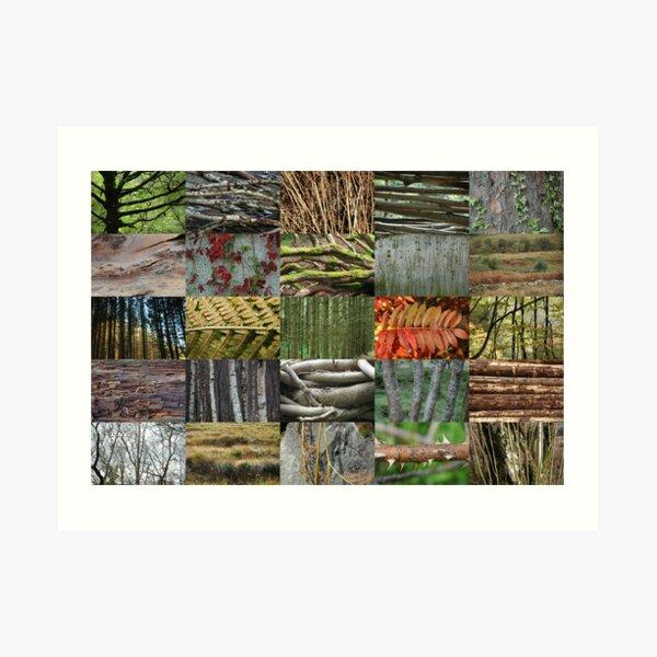 Woven Plants 5x5 Art Print