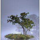 Rydal Water by Ian Yarrow