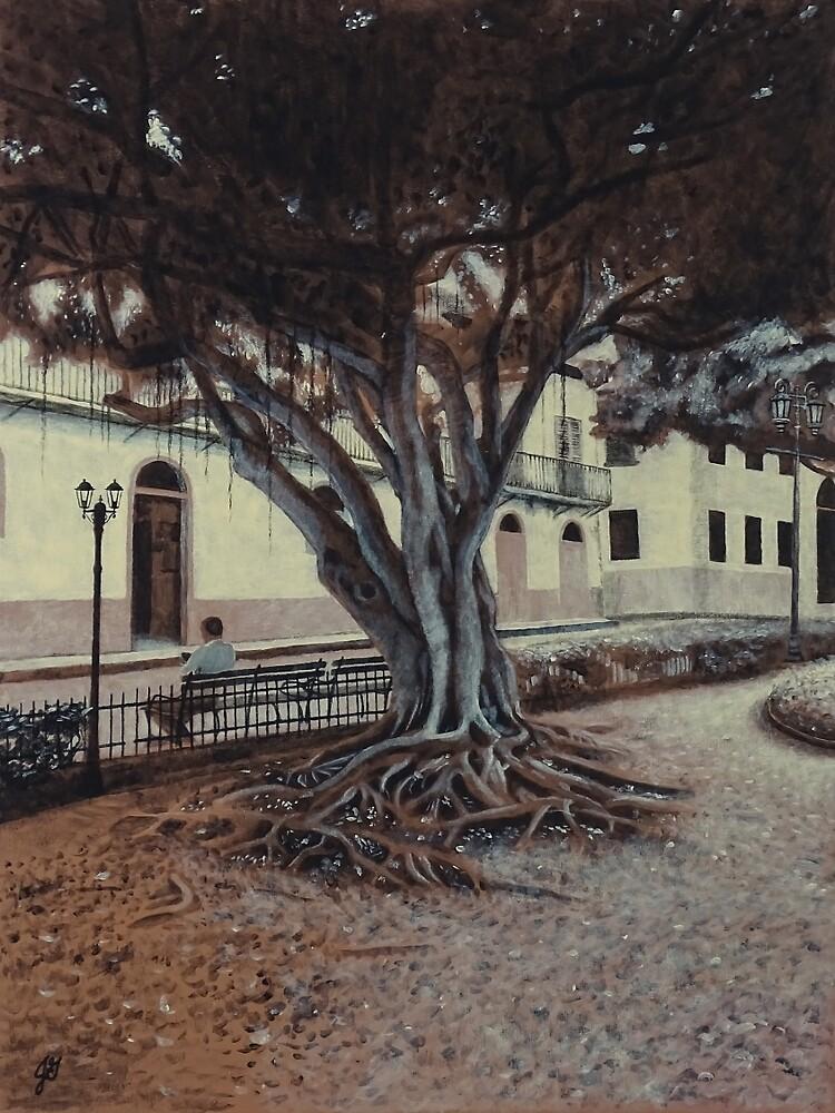 Plaza Bolivar #1 by jasongilliam