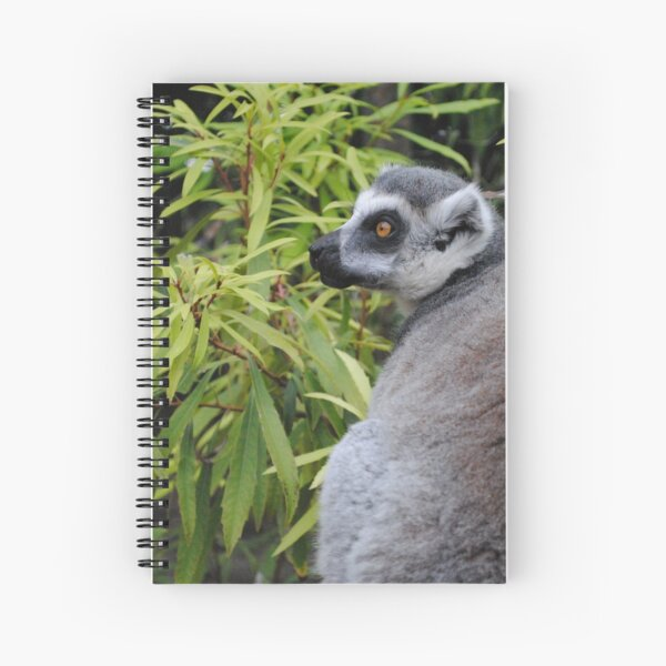 Ringtail lemur photo Spiral Notebook