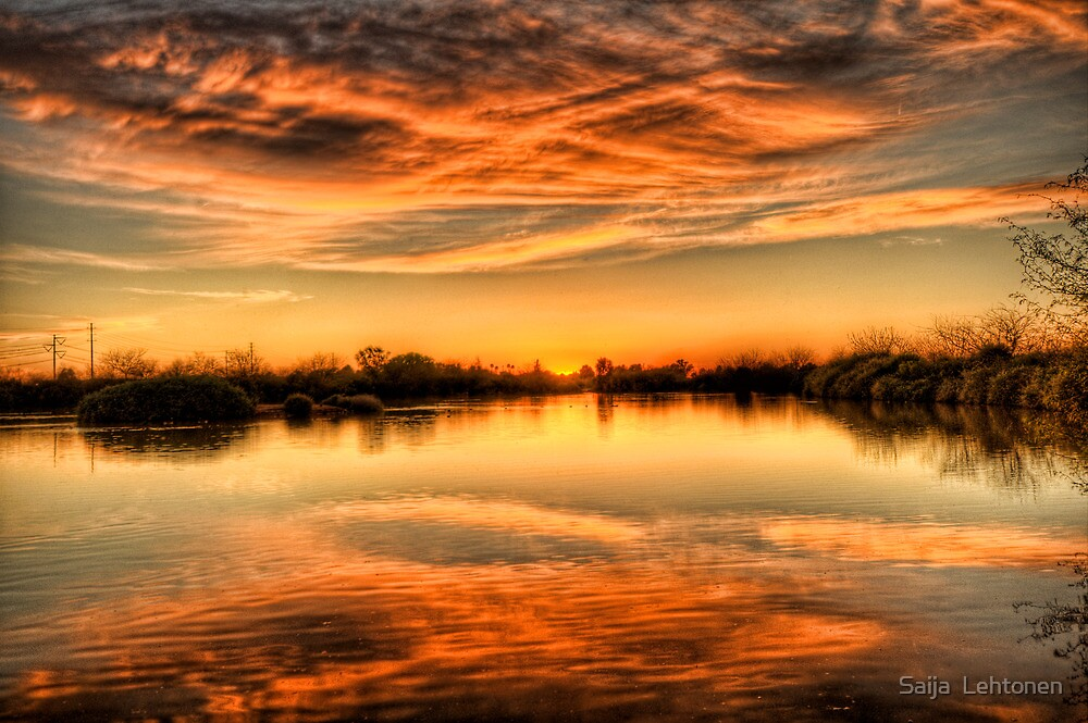 Golden Pond by Saija  Lehtonen