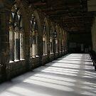 Cloister Shadows by John Dalkin