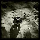Abandoned dog's toy - Brancaster Beach, Norfolk, UK by Richard Flint
