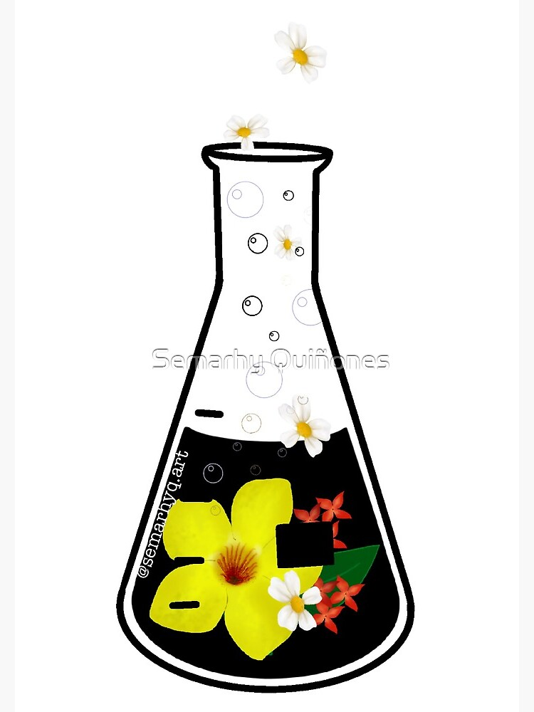 Conical flask by semarhy