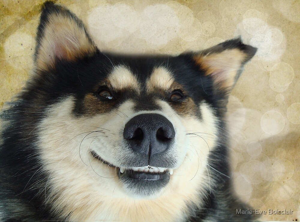I'm such a goofy dog! by Marie-Eve Boisclair