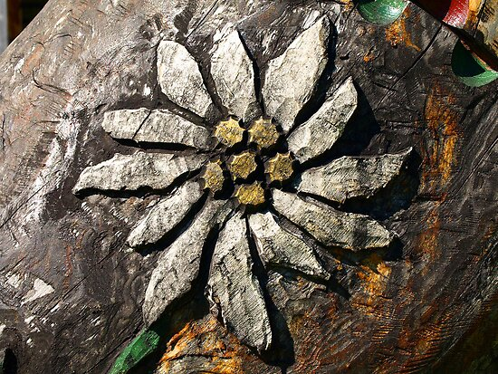 Edelweiss Wood Carving. by Lee d'Entremont