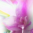 Serene colors of  Love devine by TheBrit