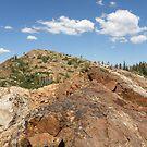 Hiking the Ridge by Patty Boyte