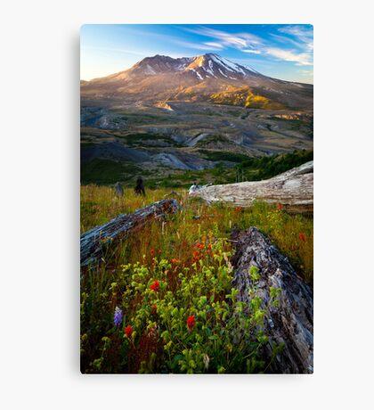 Mount St Helens Dawn Canvas Print
