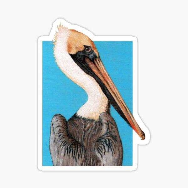 Pelican Seabird art by Artist Sherrie Spencer Sticker