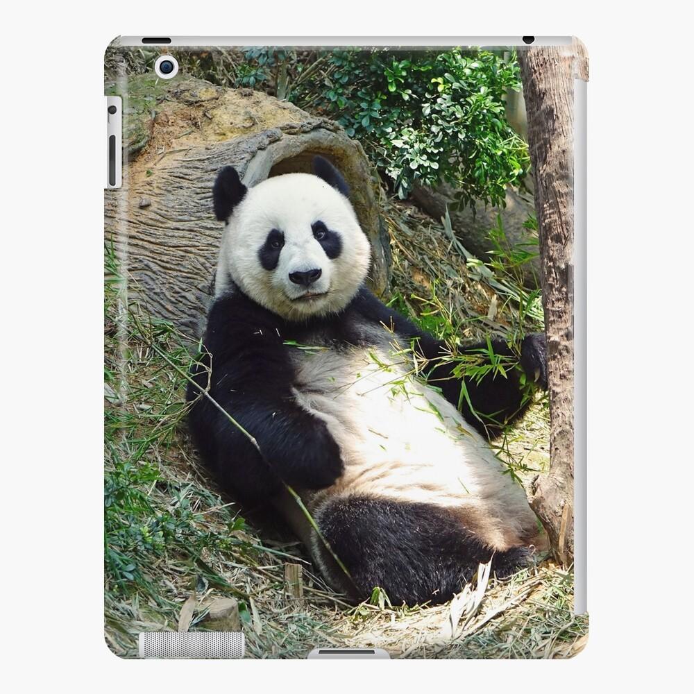 Panda iPad-Hülle & Skin
